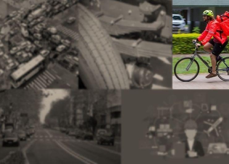 IV. Gestión de la seguridad vial y legislación